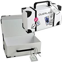 Брендированный чемодан для образцов продукции